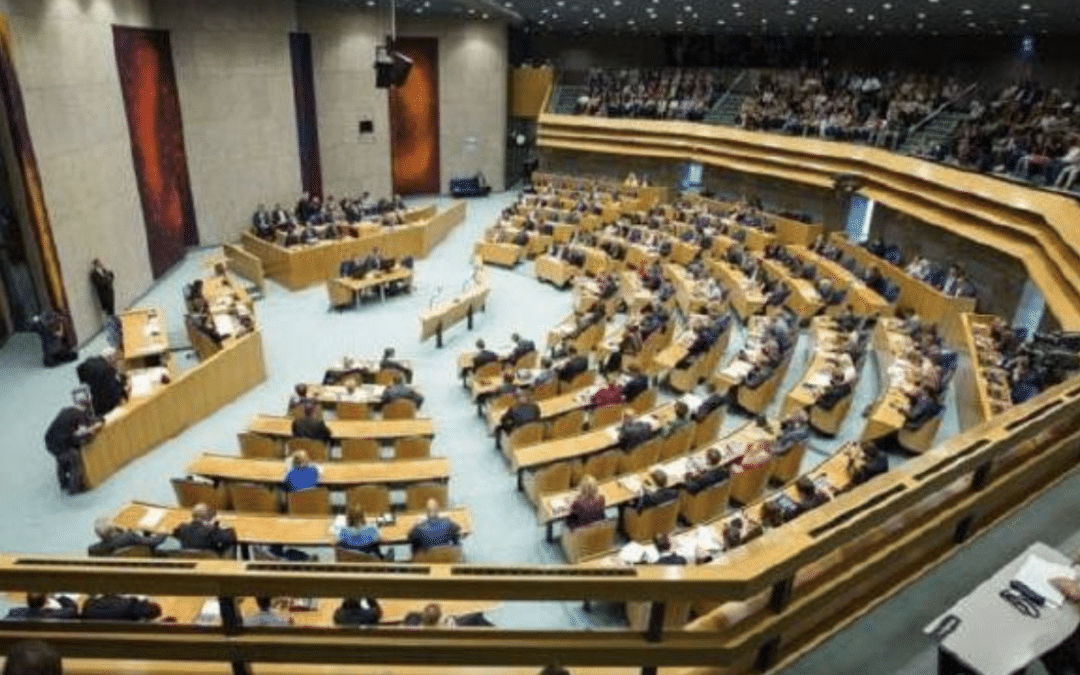 Anglican Futures:  General Synod, Will My Voice Be Heard?