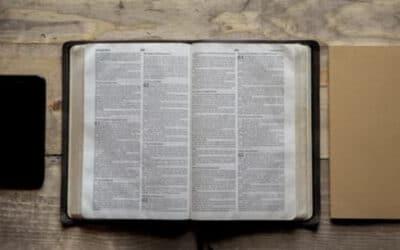 General Synod – Prudence Dailey