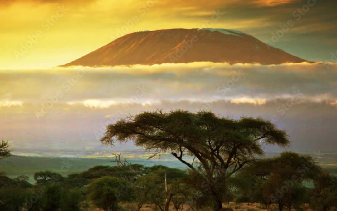 Diocese of Mount Kilimanjaro Plants 400 Churches Since 2012