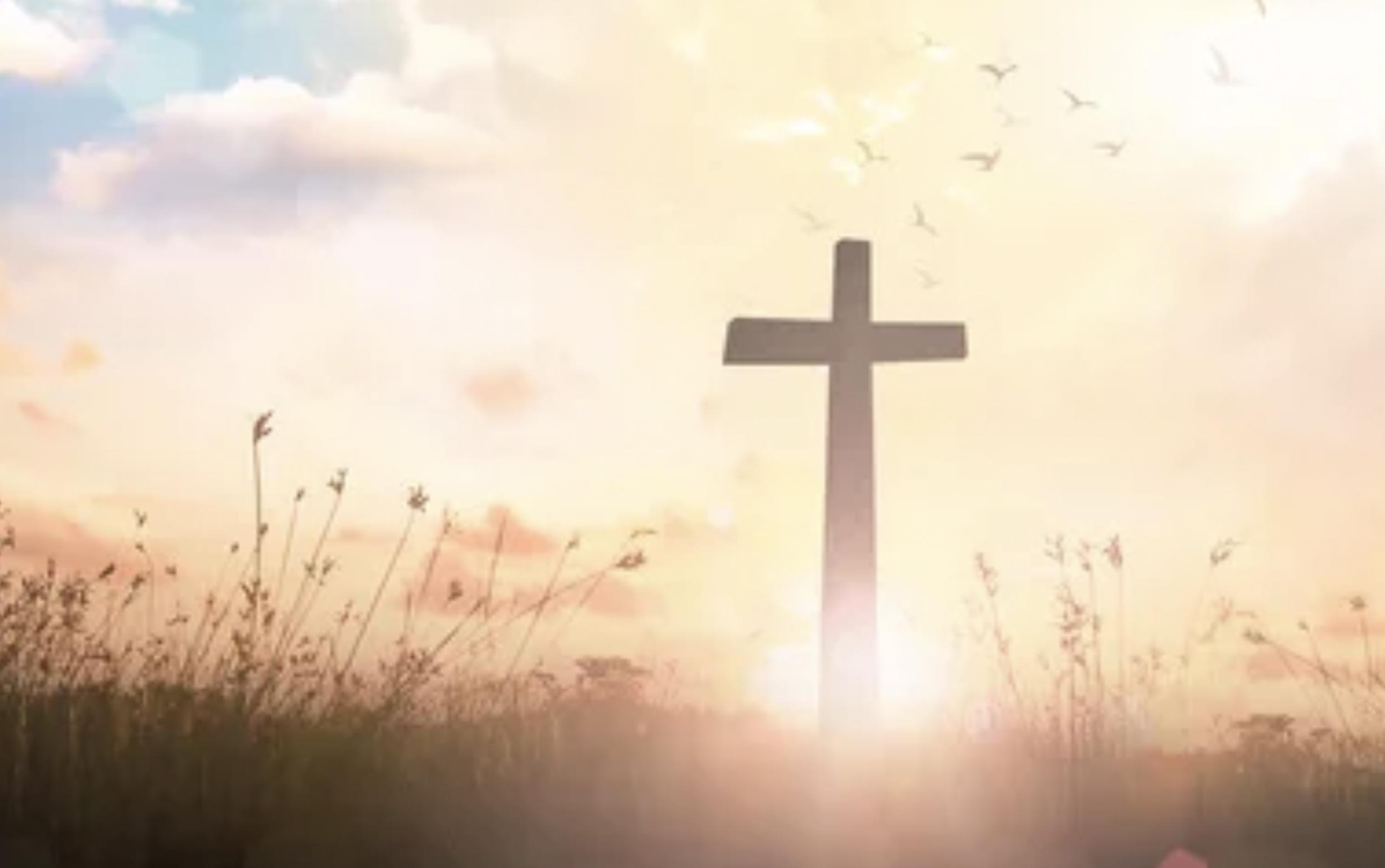 The Splendour of the Cross & Gospel of Grace by Revd Dr Mark Pickles